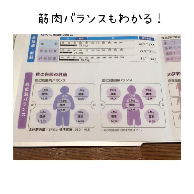 ルカの体重・体脂肪率測定結果1