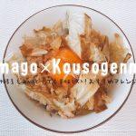 酵素玄米の卵かけごはんが美味しい&手軽で朝ごはんにぴったり◎